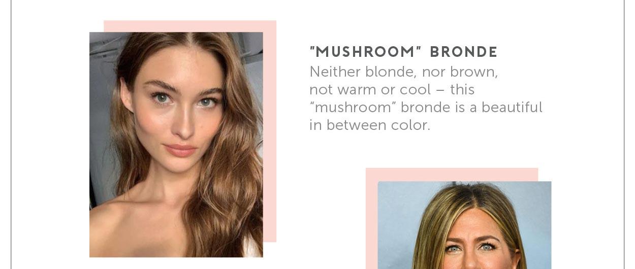 """Mushroom"" Bronde Neither blonde, nor brown, not warm or cool- this ""mushroom"" bronde is a beautiful in between color."